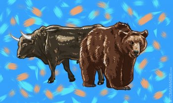 placeholder bear bull together 350x209 6