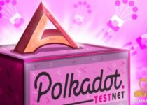 Acala Launches the 1st Parachain on Polkadot Testnet 1 350x209 2