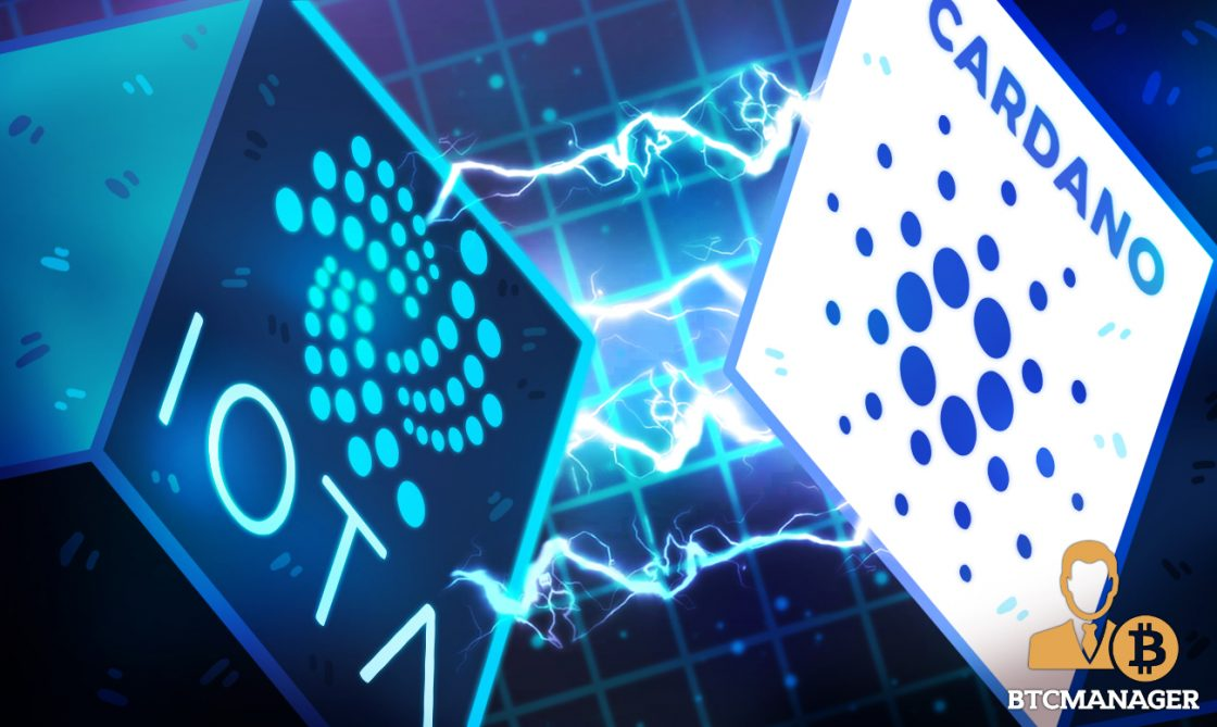 IOTA Co-founder Schiener Considers Partnership and Bridge to Cardano