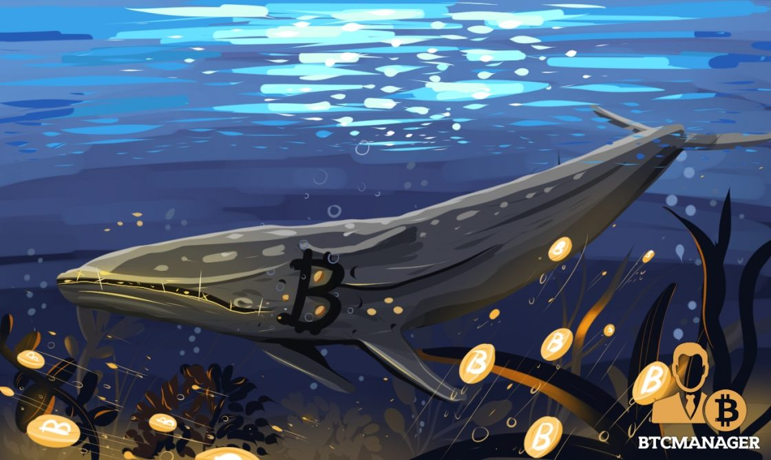 How One of the Largest Institutional Whales Came Out From the Shadows