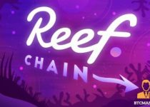 Reef Finance launches 20M Grant to enhance Reef Chain Development 350x209 2