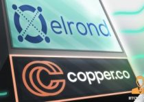 Leading Digital Custody Services Provider Copper.co Supports EGLD Token And Elrond Blockchain Assets 350x209 2